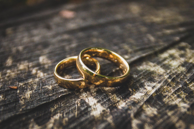 Detail der Eheringe auf einem Baumstamm - auch das ist wichtiger Bestandteil der Hochzeitsfotos - Hochzeitsfotos