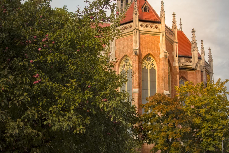 Herbstliche Stimmung an der Heilig-Kreuz-Kirche in Giesing vor der Trauung
