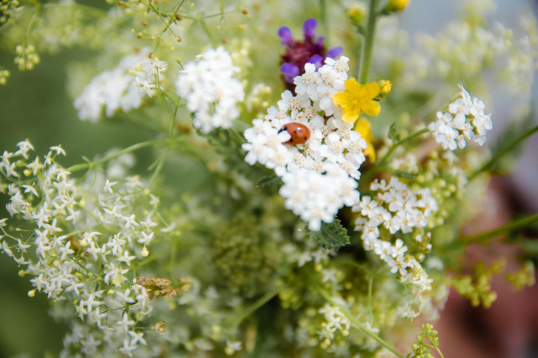 Ein Marienkäfer krabbelt durch dem sommerlichen Brautstrauß - Hochzeitsreportage München
