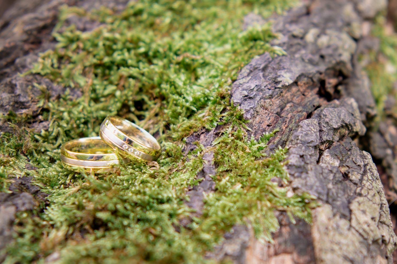 Eheringe im Moos auf dem Baumstamm - so werden die Ringe von der Hochzeitsfotografin perfekt in Szene gesetzt - Hochzeitsreportage München
