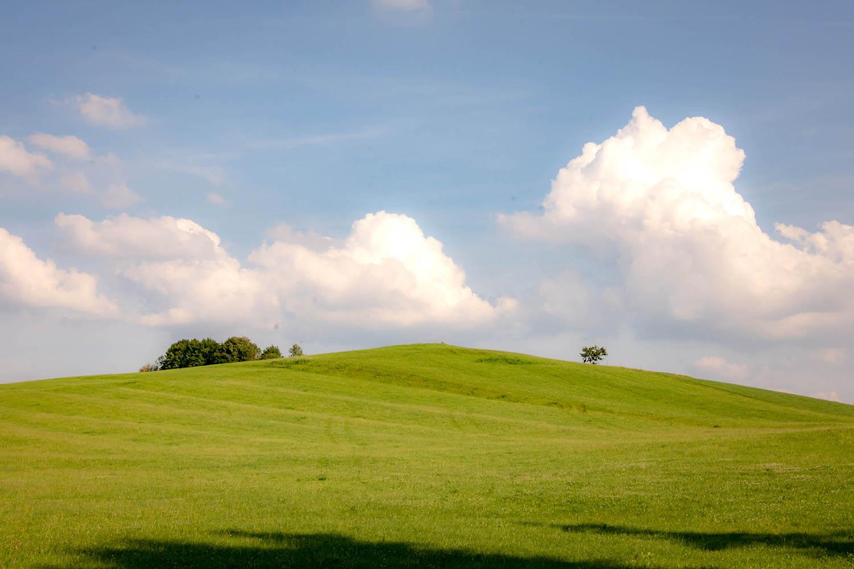 Eine grüne Sommerwiese am Irschenberg im Süden von München bei strahlendem Sonnenschein - Hochzeitsreportage München