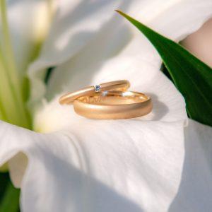 Die Eheringe im Kelch einer weißen Blume - hier kommen sie für das Hochzeitsfoto erst richtig zur Geltung - Hochzeitsreportage München